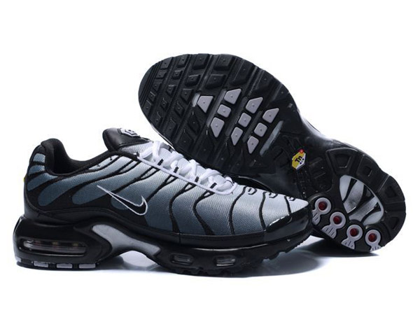 tn air max requin, OFF 76%,where to buy!